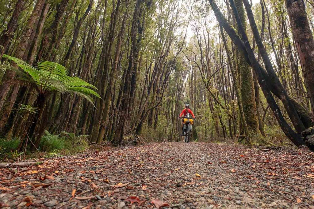 West Coast Wilderness Cycle Tours blog post vol 3 thunderbirds we are go